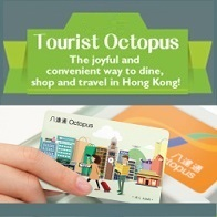 Tourist Octopus (Sold version)